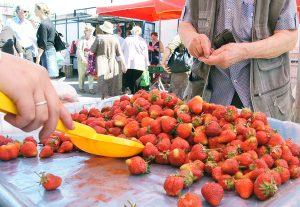 """Wczoraj na wileńskim rynku """"Pod Halą"""" litewskie jagody kosztowały około 9 Lt za kg, zagraniczne zaś około 7 Lt"""