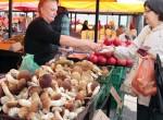 """Na Rynku Kalwaryjskim """"grzybów było w bród"""" Fot. Marian Paluszkiewicz"""