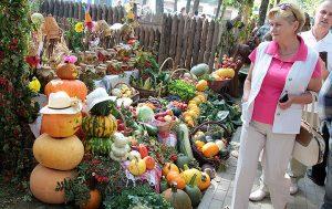 Wszystkie zagrody zaprezentowały pomysłowo udekorowane zbiory tej jesieni  Fot. Marian Paluszkiewicz