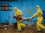 Epidemia eboli rozpoczęta w Afryce pochłonęła dotąd życie 6 990 osób Fot. archiwum